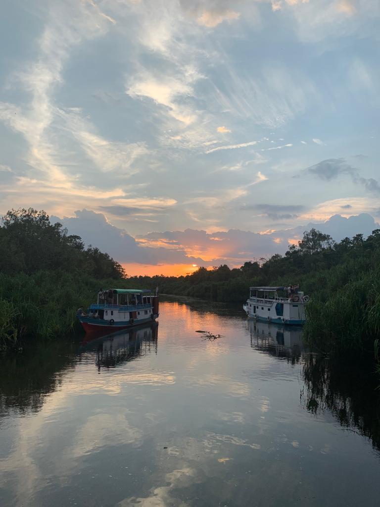 Flodbåt i Borneos djungler