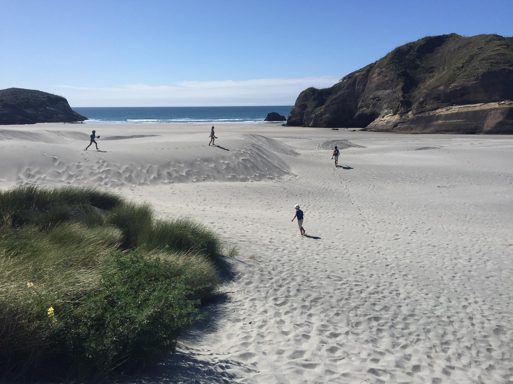 We love NZ